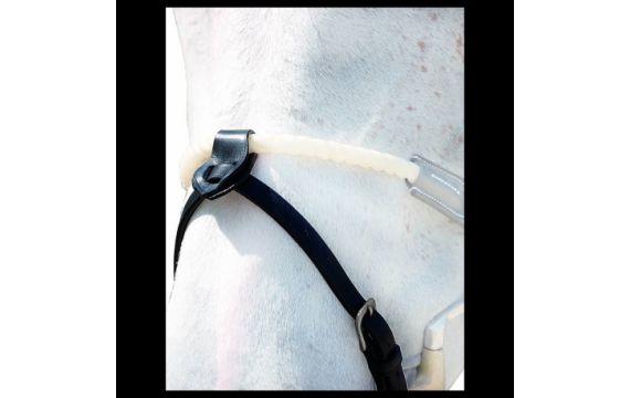Collier plat doublé CHETAK Privile Equitation