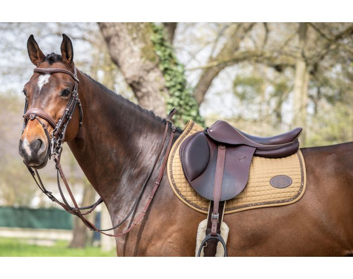 Frontal crystal round Harry s horse