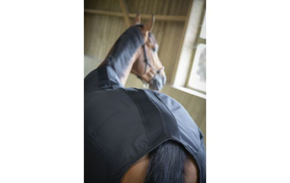 Protege boulet Protech Harry s horse