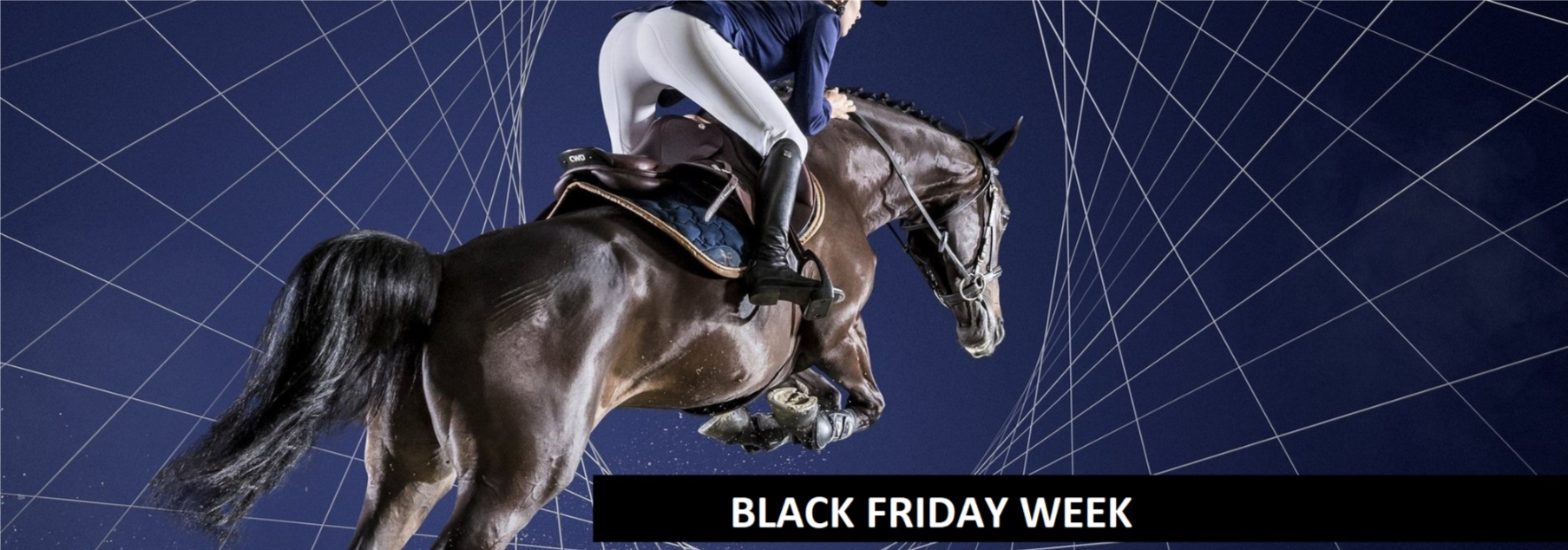 black friday equitation cheval